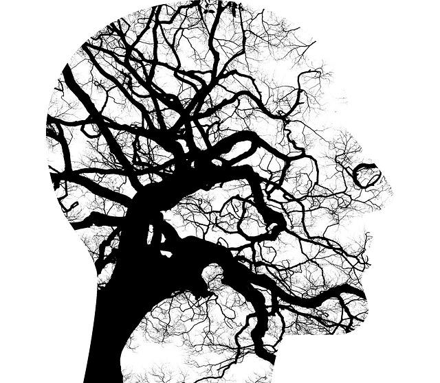 La santé mentale : la première chose à prendre soin